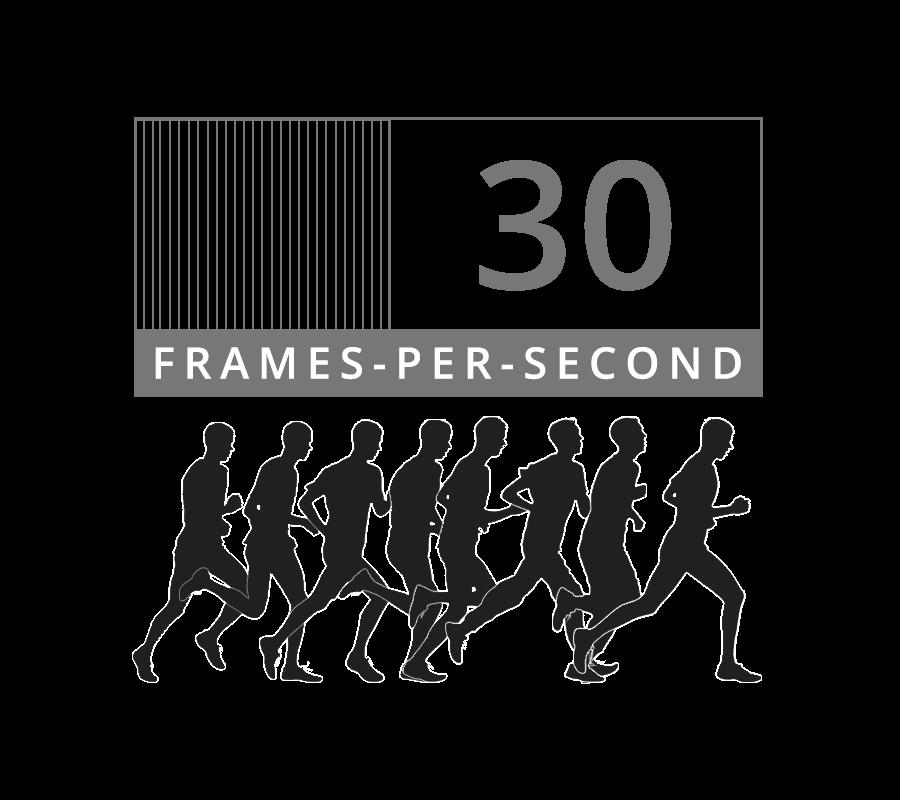 30 frames per second - 30fps nocturnal security cameras