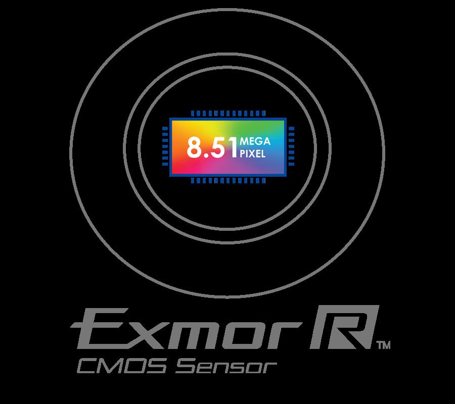 Sony Exmor R image sensor nocturnal security cameras